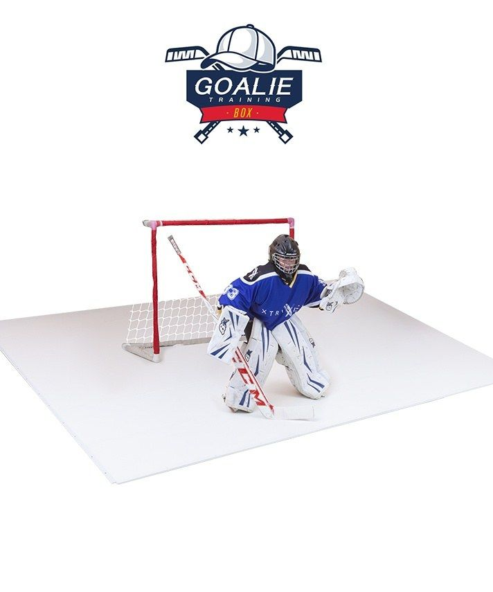 Synthetic Ice Goalie